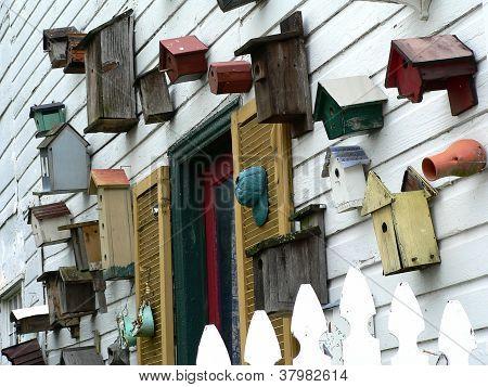 Birdhouses (landscape)