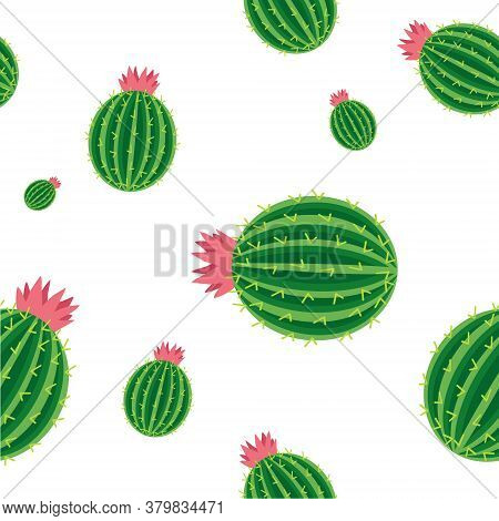 Cacti, Background Seamless Image Of Blooming Cacti With Thorns. Vector, Cartoon Illustration.