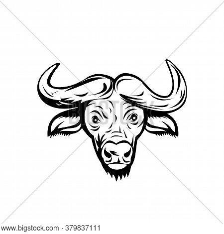 Retro Style Illustration Of Head Of An African Buffalo Or Cape Buffalo, A Large Sub-saharan African
