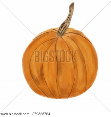 Watercolor Ripe Pumpkin Isolated On White Background. Seasonal Vegetable. Halloween Symbol.