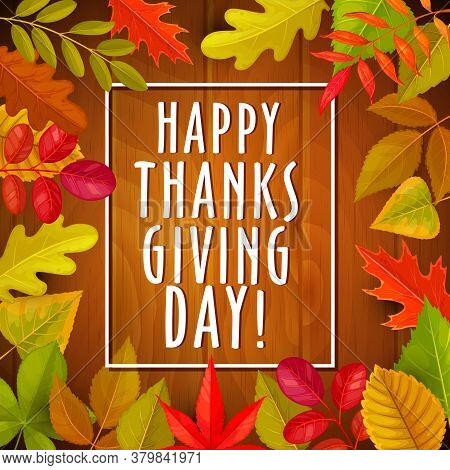 Happy Thanksgiving Day Holiday Vector Greeting Card With Autumn Fallen Leaves On Wooden Background.