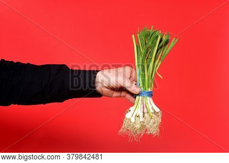 Hand Holding A Tender Garlic On Red Background