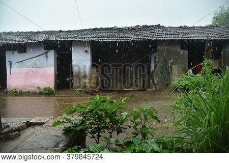 Rain In Village. Beautiful Village Photo Background.