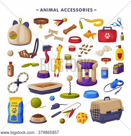 Pet Animal Accessories Big Set, Cats And Dogs Products, Food, Toys, Veterinary Medicines, Accessorie