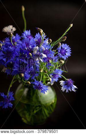 Cornflower Flower. Bouquet Of Cornflowers In A Vase On A Black Background. Blue Flowers, Summer Fiel
