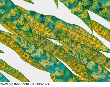 Green Menthe And Yellow Watercolor Leaves Seamless Pattern. Summer Floral Background. Botanical Fore
