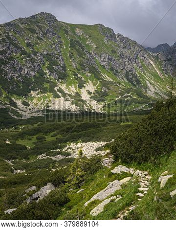 Rocky Hiking Trail In High Tatras Mountains In Slovakia Surrounded By Coniferous Trees. Top Of Mount