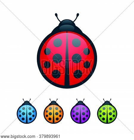 Colorful Ladybugs With Wings Closed On White Background. Round Bugs Vector Icon Set.