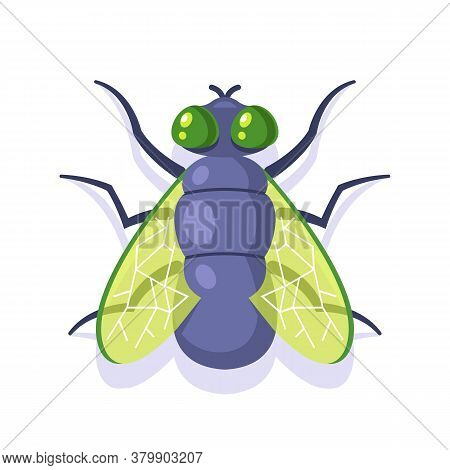 Flat Green Fly On A White Background. Insect Flat Vector Illustration.