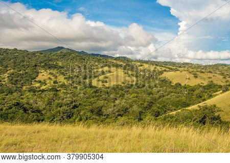 The Landscape Of Grassland And Shrubs, On Rinca Island In Komodo National Park In Flores, Indonesia