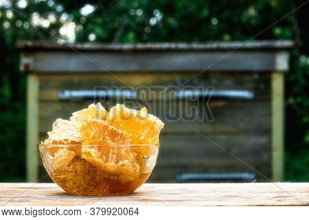 14 August - The Day Of The Beekeeper. Savior Of The Honey Feast Day. Honey In A Honeycomb On The Bac