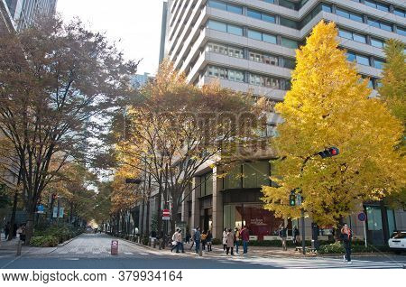 Tokyo, Japan - December 1, 2018: Long Road Alley Shopping Street With Gingko Yellow Foliage Leaves T