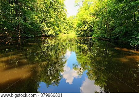 Scenic Nature Landscape Of Small Pond In The Old Dense Forest In Sunny Summer Day. Blue Sky With Whi