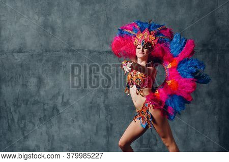 Woman In Brazilian Samba Carnival Costume With Colorful Feathers Plumage