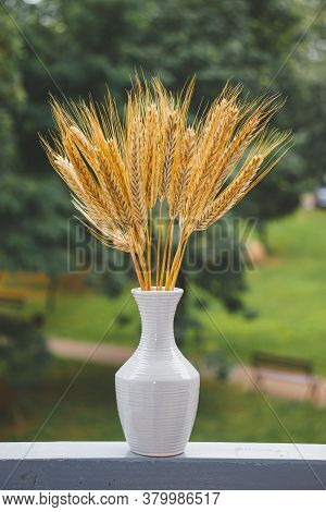 Yellow Ears Of Rye In A White Vase. Vase With A Bouquet Of Rye Ears On The Background Of Trees In Th