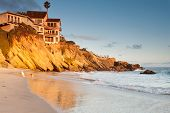 Luxurious house on cliffs in Southern California beach with playing dogs on the beach at sunset poster