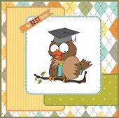 funny owl teacher, illustration in vector format poster