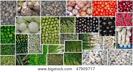 Vegetables Diverse and colorful