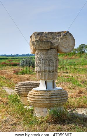 Archaeological Park of Metaponto. Basilicata. Southern Italy.