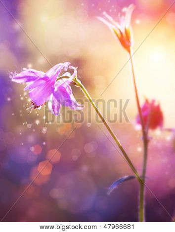 Purple Flowers art Design. Floral Abstract Image. Soft Focus poster
