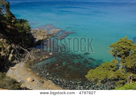 Small Beach View