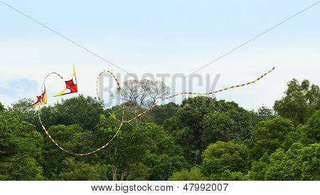 Double trick kite