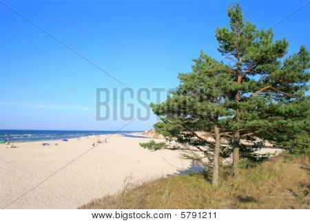 Landscape on the beach