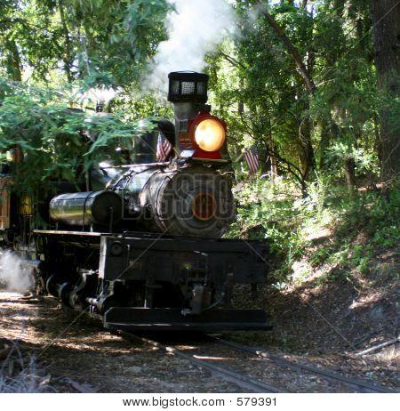 Steam Engine Dixiana