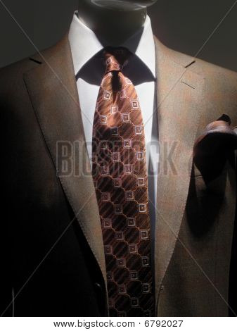 Brown Jacket And Tie (vertical)