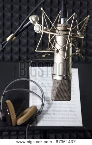 Condenser Microphone In Vocal Recording Room