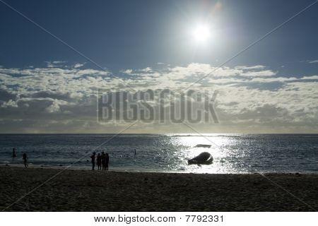 Mauritian Beach