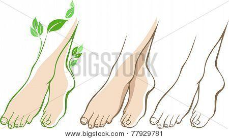 Beautiful woman feet