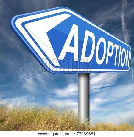 child adoption becoming a legal guardian and getting guardianship and adopt young baby   poster