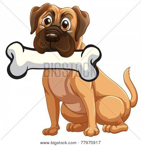 A dog with a bone on a white background