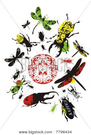 decorative insects