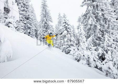 Snowboard freerider having fun on ski slope against beautiful trees in Alps