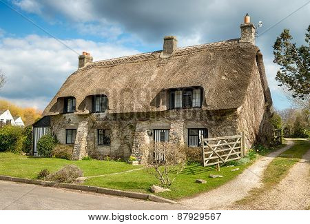 Dorset Thatched Cottage