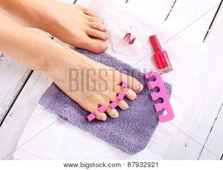 Purple pedicure, groomed female foot