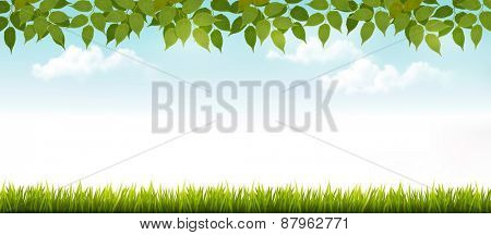 Nature background with leaves and grass. Vector.