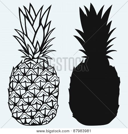 Ripe tasty pineapple