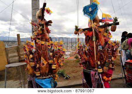 Latacunga, Ecuador 30 September, 2012: Unidentified people parade pigs adorned with fruits, spirits, flags and guinea pigs at La Fiesta de la Mama Negra traditional festival in Latacunga, Ecuador.