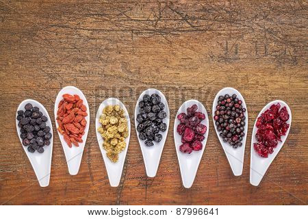 healthy dried berry collection (blueberry, mulberry, cherry, goji, elderberry, chokeberry,) cranberry on  ceramic spoons against rustic wood with a copy space
