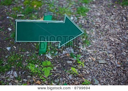 Empty Sign On Forest Grounds