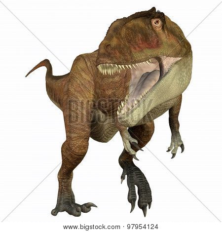 Carcharodontosaurus was a carnivorous theropod dinosaur that lived in Sahara Africa during the Cretaceous Period. poster