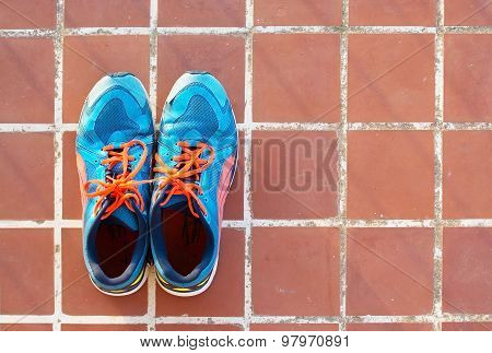 Blue Sports Shoes On Terracotta Floor
