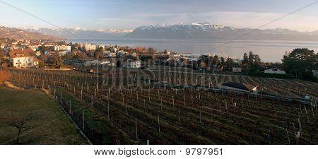 Lake Geneva Panorama