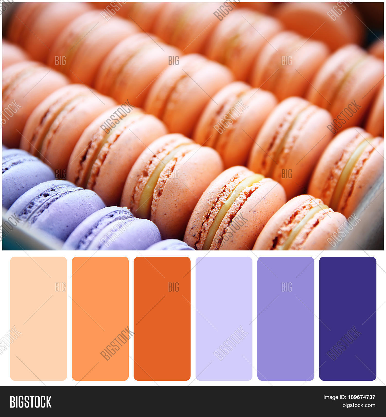 Apricot Color Matching Image & Photo (Free Trial) | Bigstock