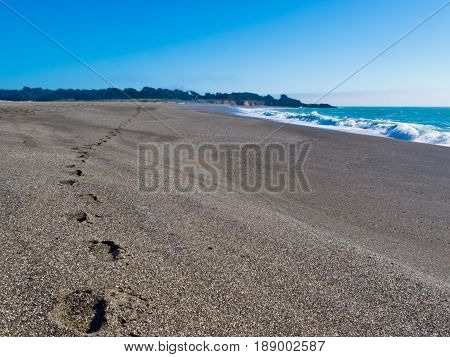Foot prints of person in wet sand of beautiful beach with Pacific Coast surf rolling in on California sand beach CA USA