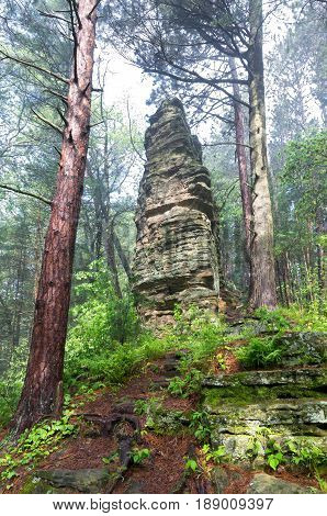 castellated mound along nature trail in castle mound pine forest state natural area outside black river falls wisconsin