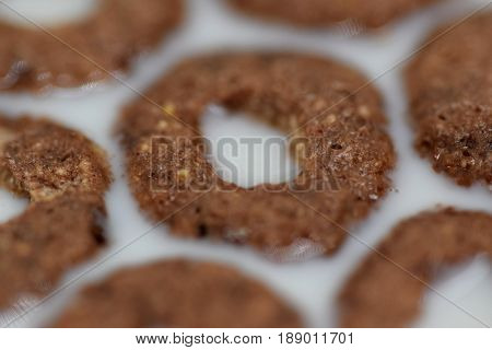 Macro view on the chocolate roll in milk, forming the flower shape, waiting to become a somebody breakfast